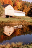 The barn and pond in autumn